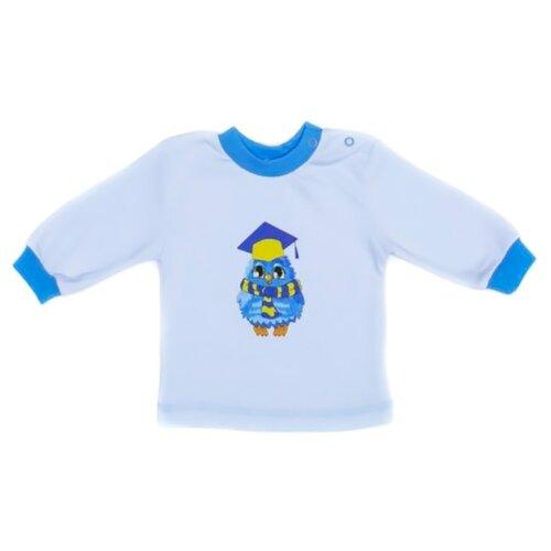 Свитшот Babyglory размер 80, голубой джемпер для новорожденных babyglory superstar цвет синий ss001 09 размер 80