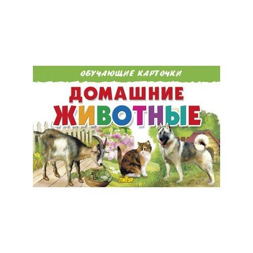 Купить Домашние животные. Обучающие карточки, Литур, Учебные пособия