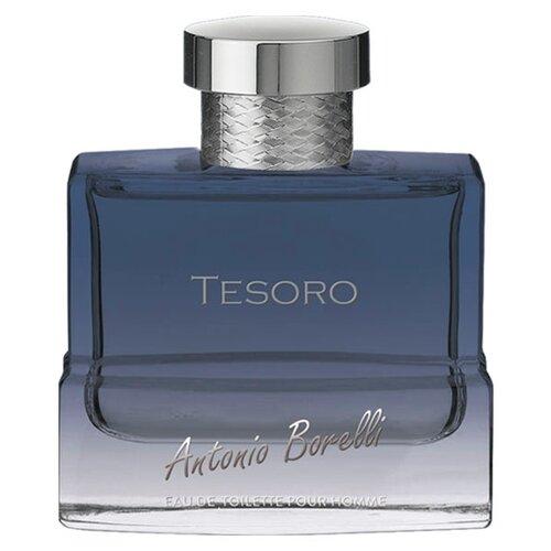 Туалетная вода Christine Lavoisier Parfums Antonio Borelli Tesoro, 100 мл туалетная вода christine lavoisier parfums diamond pleasure 60 мл