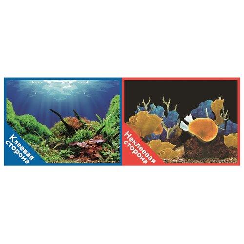 Пленочный фон Prime Подводный мир/Морские кораллы двухсторонний 50х100 см