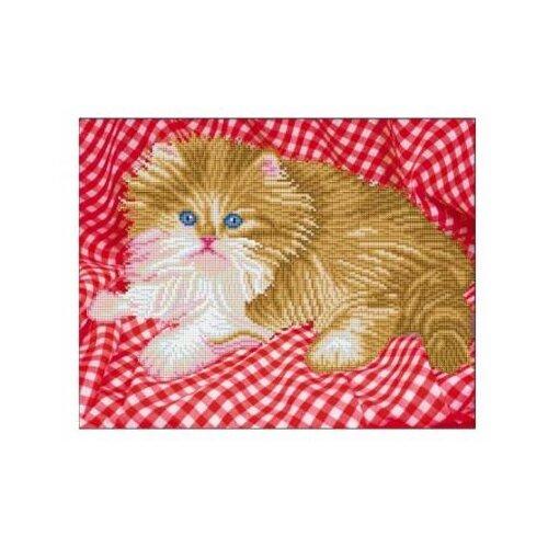 Рыжий кот Набор алмазной вышивки Бело-рыжий котенок (ASD5023) 40х50см