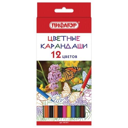 Пифагор Карандаши цветные Бабочки, 12 цветов (181351) восковые карандаши пифагор 12 цветов 222962