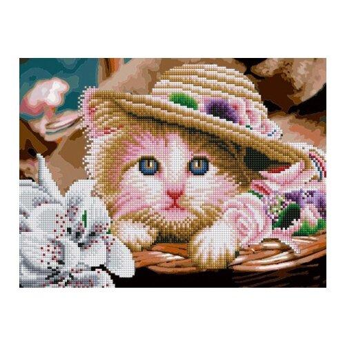 Купить Рыжий кот Набор алмазной вышивки Зеленоглазый котенок в шляпе (ASK3002) 30х40 см, Алмазная вышивка