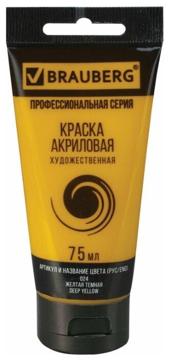 Купить BRAUBERG Краска акриловая художественная Профессиональная серия 75 мл желтая темная по низкой цене с доставкой из Яндекс.Маркета (бывший Беру)