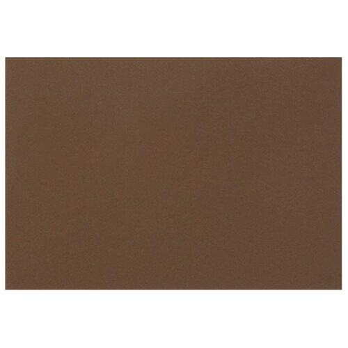 Купить Бумага Fabriano Tiziano для пастели 65 х 50 см, 160г/м², 1 л. caffe, Бумага для рисования