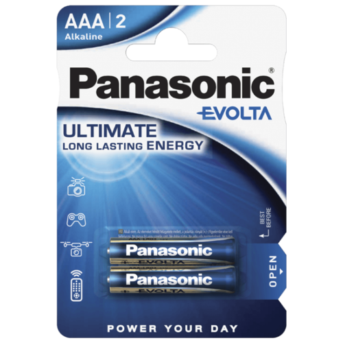 Фото - Батарейка Panasonic Evolta AAA/LR03, 2 шт. батарейка panasonic evolta aaa lr03 4 шт