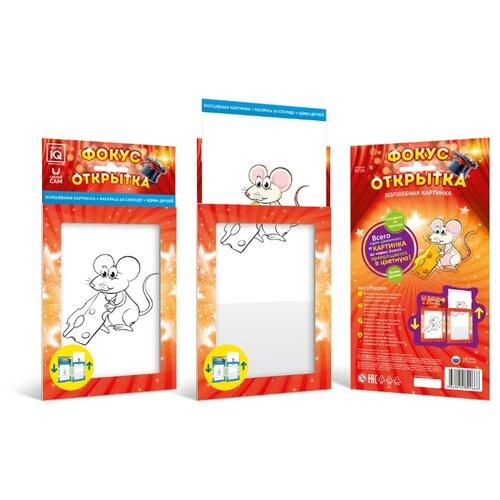 Набор для фокусов Master IQ² Фокус открытка. Мышка 1 master iq² фокус открытка букет цветов