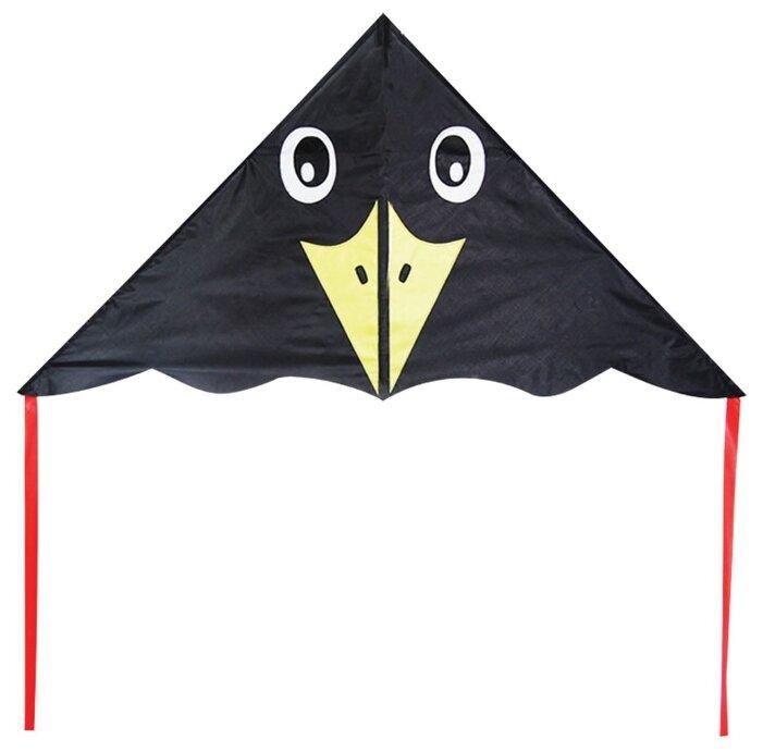 Воздушный змей X-Match Черный ворон (681458)