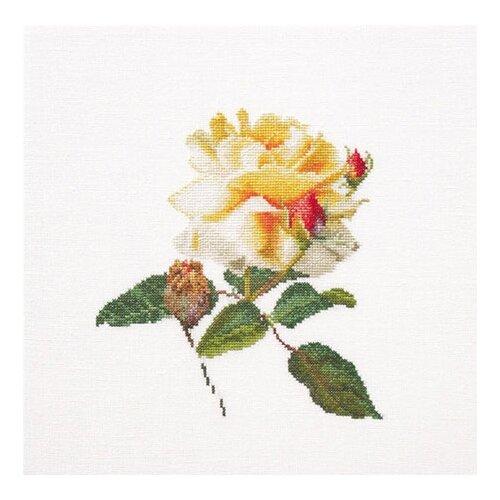 Купить Набор для вышивания Цветение белой розы, канва лён 36 ct, Thea Gouverneur, Наборы для вышивания