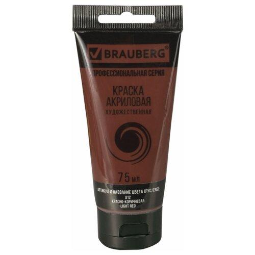 Купить BRAUBERG Краска акриловая художественная Профессиональная серия 75 мл красно-коричневая, Краски
