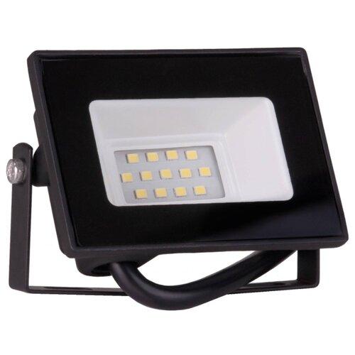 Прожектор светодиодный 10 Вт Elektrostandard 010 FL LED (6500K IP65)