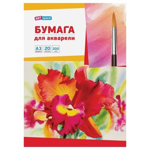 Купить Папка для акварели ArtSpace 42 х 29.7 см (A3), 200 г/м², 20 л., Альбомы для рисования