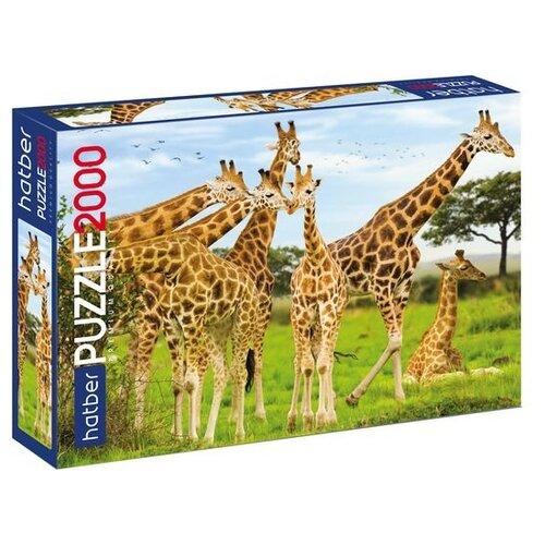 Купить Пазл Hatber Premium Жирафы (2000ПЗ1_19321), 2000 дет., Пазлы