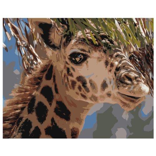 Купить Жираф Раскраска картина по номерам на холсте Z-AB370 40х50, Живопись по номерам, Картины по номерам и контурам