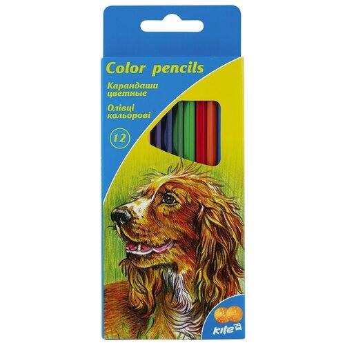 Купить Kite цветные карандаши Животные, 12 цветов (K15-051), Цветные карандаши