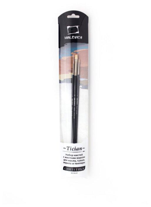 Набор кистей Малевичъ Tician синтетика, с длинной ручкой, 3 шт.