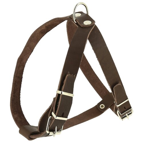 Шлейка КАСКАД Classic, ширина 20 мм, обхват груди 45-53 см, обхват шеи 45-53 см, коричневый