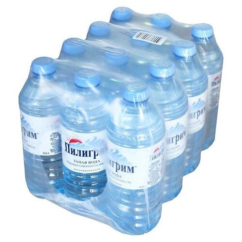 Минеральная питьевая вода Пилигрим негазированная, ПЭТ, 12 шт. по 0.5 л минеральная питьевая столовая вода легенда гор архыз негазированная пэт 1 5 л