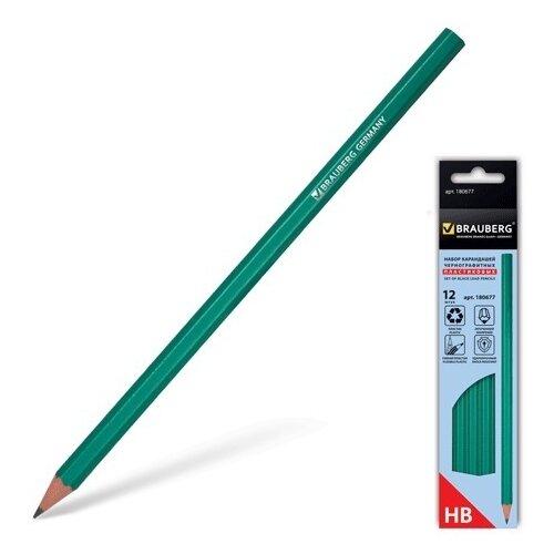 Купить BRAUBERG Набор чернографитных карандашей 12 штук (180677), Карандаши