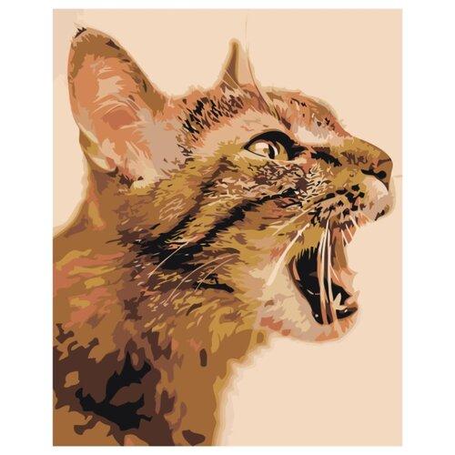 Купить Кошачье мяу Раскраска картина по номерам на холсте Z-AB237 40х50, Живопись по номерам, Картины по номерам и контурам