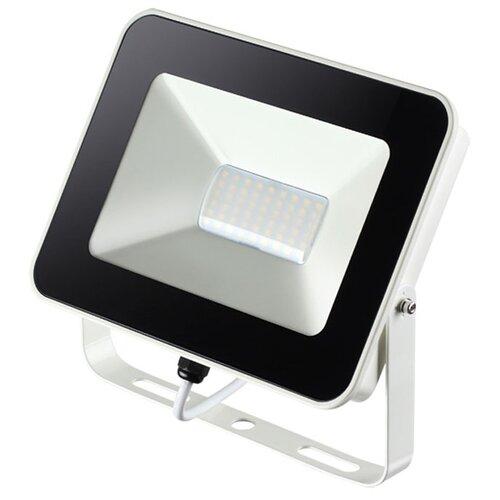 Прожектор светодиодный 30 Вт Novotech Armin 357528