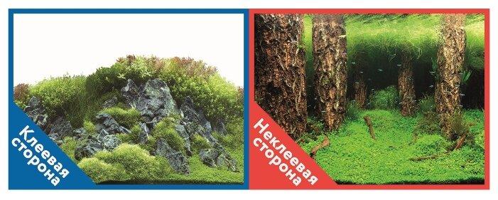 Пленочный фон Prime Камни с растениями/Затопленный