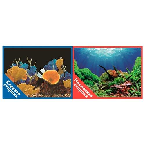 Пленочный фон Prime Морские кораллы/Подводный мир двухсторонний 50х100 см