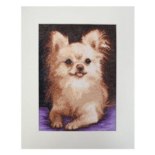 Купить Hobby & Pro Набор для вышивания Чихуахуа 16 х 22 см (805), Наборы для вышивания