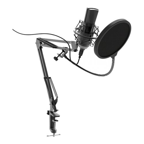 Микрофон Ritmix RDM-180, черный