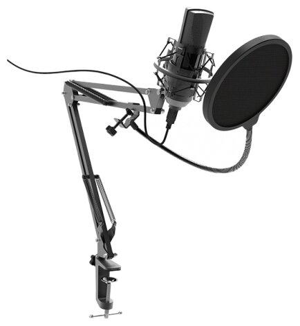 Микрофон Ritmix RDM-180