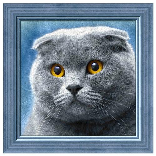 Стоит ли покупать Алмазная живопись Набор алмазной вышивки Шотландец (АЖ-1619) 25х25 см? Отзывы на Яндекс.Маркете