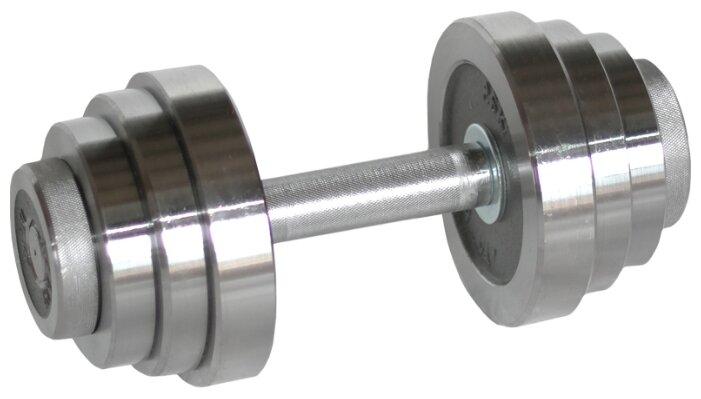 Купить Гантель разборная Атлант-Спорт металлическая разборная 12 кг серебристый по низкой цене с доставкой из Яндекс.Маркета (бывший Беру)