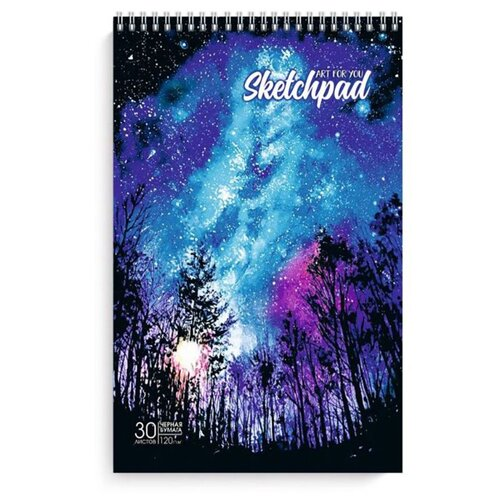 Купить Альбом Феникс Звездное небо 29.2 х 19.5 см, 120 г/м², 30 л., Альбомы для рисования