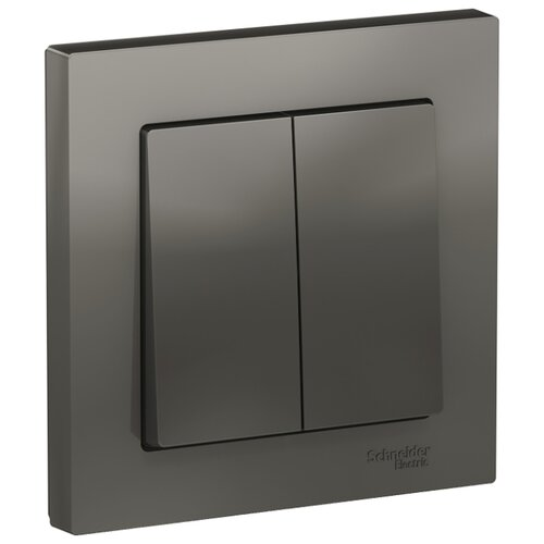 Выключатель 2х1-полюсный Schneider Electric ATN000952 AtlasDesign, 10 А, нержавеющая сталь выключатель 1 полюсный schneider electric atn000211 atlasdesign 10 а бежевый
