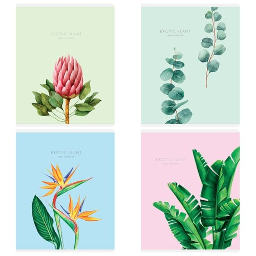 Купить Greenwich Line Упаковка тетрадей Exotic flowers N5c48-26452, 5 шт./4 дизайна, клетка, 48 л., Тетради