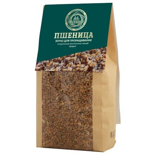 Семена льна Малавит для