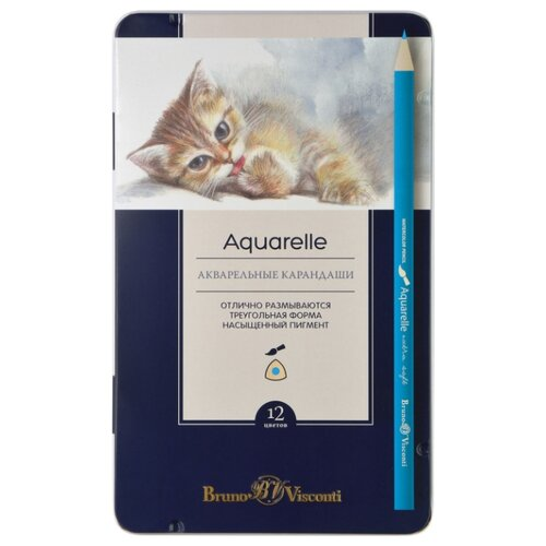 Купить Bruno Visconti Акварельные карандаши Aquarelle, 12 цветов (30-0037), Цветные карандаши