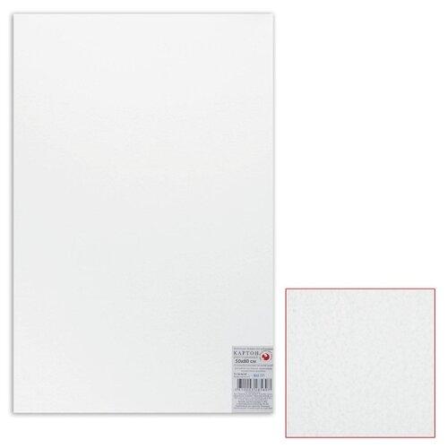 Белый картон грунтованный Подольск-арт-центр для живописи 50х80 см, толщина 2 мм, акриловый грунт, двусторонний (5852)