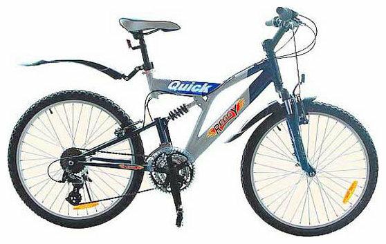 Горный (MTB) велосипед REGGY RG24B25101