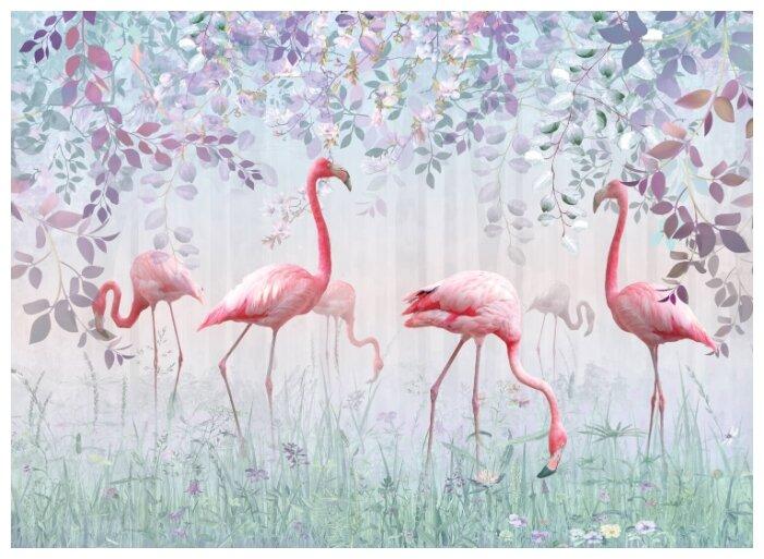 Купить Фотообои PosterMarket WM-82NW (Фламинго в саду) 254*184 Ш*В по низкой цене с доставкой из Яндекс.Маркета