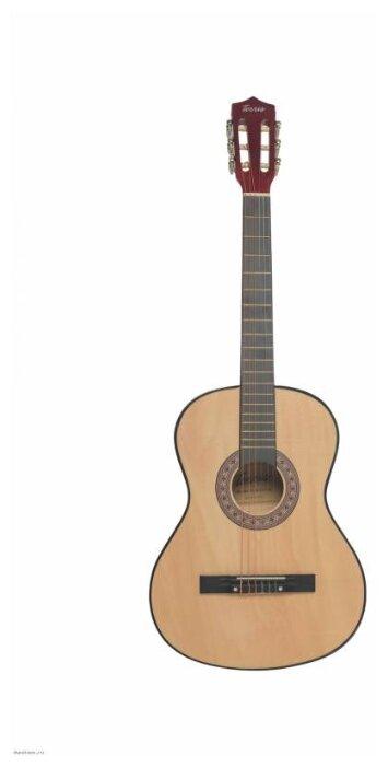 Гитара классическая Terris TC-3801A NA