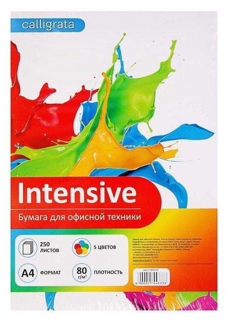 Бумага A4 250 шт. Calligrata Intensive