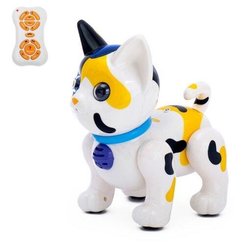 Фото - Робот Zhorya Умный питомец Кот ZYA-A2744-2 белый/черный/оранжевый радиоуправляемый робот zhorya интерактивный белый кот 2059