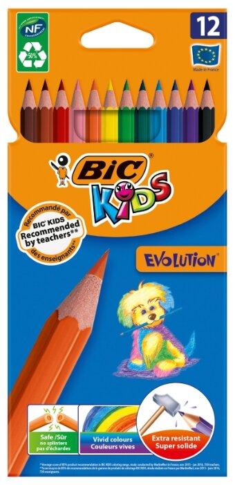BIC Цветные карандаши Evolution 12 цветов (82902910) — купить по выгодной цене на Яндекс.Маркете