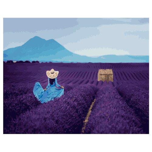 Купить ВанГогВоМне Картина по номерам Лаванда , 40х50 см (ZX 20926), Картины по номерам и контурам