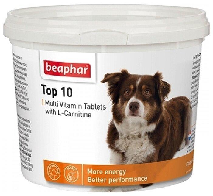 Добавка в корм Beaphar Top 10 Multi Vitamin с L-карнитином для собак