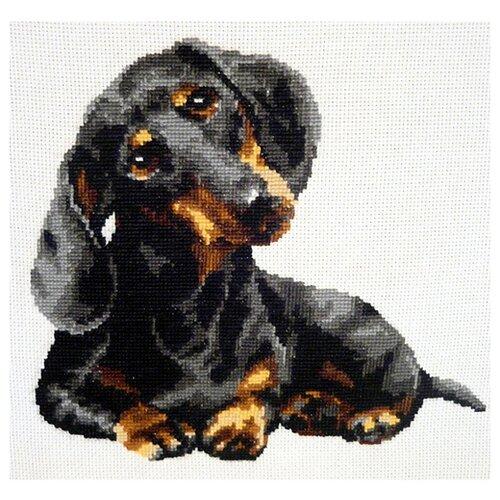 Купить Риолис Набор для вышивания Такса 25 х 25 см (906), Наборы для вышивания
