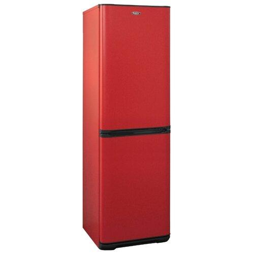 Холодильник Бирюса H631 бирюса 649