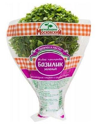 Агрохолдинг Московский Базилик зеленый в горшочке, пакет полиэтиленовый (Россия)