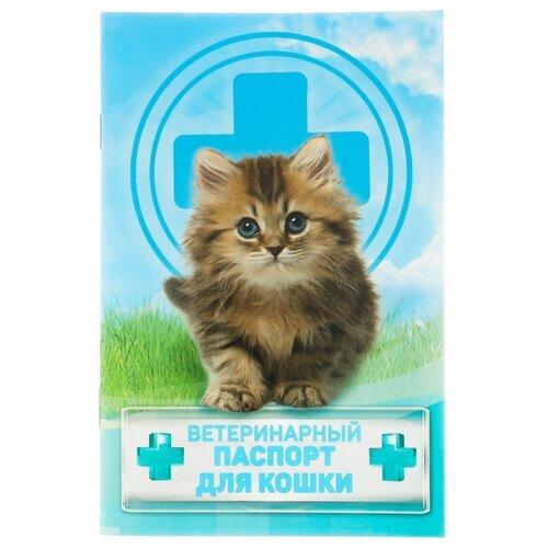 Ветеринарный паспорт Сима-ленд Для кошки 10.3 см
